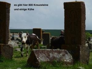 800 Kreuzsteine