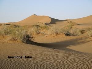 die ersten Wüstenbilder